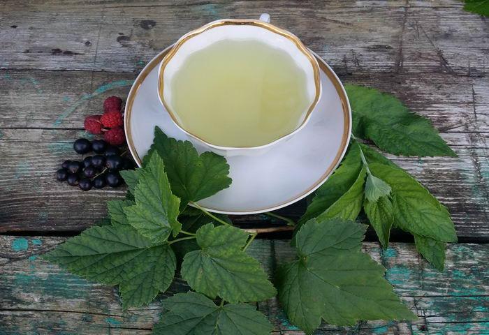 Чай из листьев малины, смородины и мяты