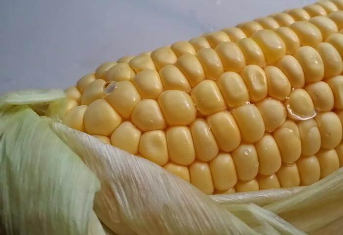 Нужно ли мыть кукурузу